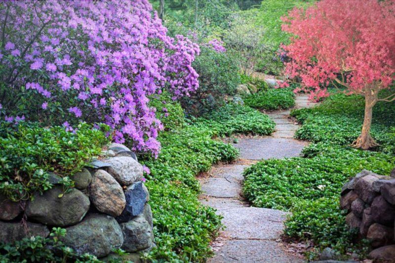 Planowanie ogrodu – ścieżki ogrodowe
